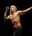Iggy & The Stooges, Photo By Ian Laidlaw