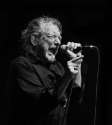 Robert Plant presents Sensational Space Shifters, Photo By Ian Laidlaw