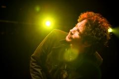 Chris Cornell 2007