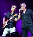Cold Chisel photo by Ros O\'Gorman