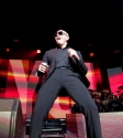 Pitbull: Photo Ros O'Gorman
