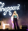 Sheppard Photo By Ros OGorman