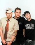Blink 182, photo, Noise11