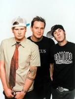 Blink 182, photo, Noise11