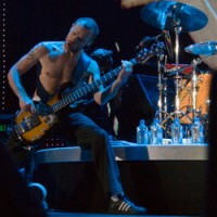 Flea of Red Hot Chili Peppers. image by Ros O&#039;Gorman.