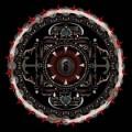Shinedown Amaryllis