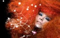 Björk, music news, noise11.com