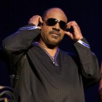 Stevie Wonder image by Ros O'Gorman