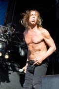 Iggy Pop, photo Ros O&#039;Gorman