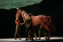 War Horse photo by Ros OGorman