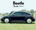 Beetle Fender, Noise11, Photo