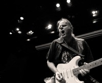 Walter Trout, music news, Noise11.com
