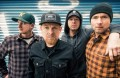 Millencolin, music news, noise11.com