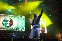 Snoop Dogg, Big Day Out 2014, photo by Ros O'Gorman