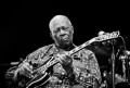 BB King Photo by Damien Loverso