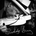 Buddy Guy Born To Play Guitar, music news, noise11.com