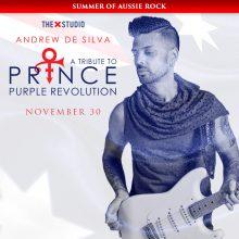 andrew-de-silva-x-studio-prince-show