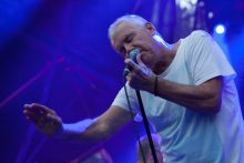A Day In The Gardens in the Botanical Gardens Melbourne on Friday 10 March 2017. Ross Wilson, Daryl Braithwaite and John Farnham each performed a set for the first A Day In The Gardens held over the March 2017 Moomba long weekend in Melbourne. Photo Ros O'Gorman