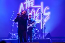 The Angels play Palms Crown Casino on Friday 27 October 2017. Photo by Ros O'Gorman