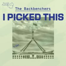 The Backbenchers Playlist