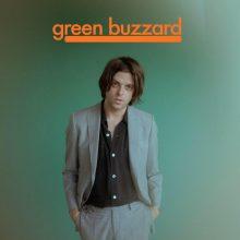 Green Buzzard