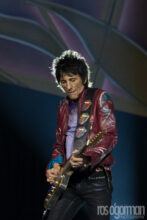 The Rolling Stones, Ros O'Gorman photographer, Rod Laver Arena