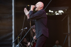 Peter Garrett and the Alter Egos