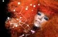 Björk, music news, noise11.com