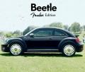 Beetle Fender, Noise11, Photo