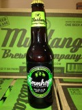 Hanson Mmhops beer, Noise11, Photo