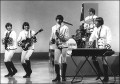 Paul Revere and the Raiders, Noise11, Photo