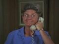 Ann B Davis in The Brady Bunch