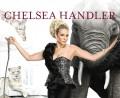 Chelsea Handler, Noise11.com