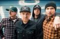 Millencolin, music news, noise11.com