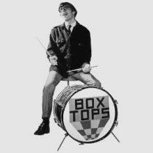 Box Tops Danny Smythe