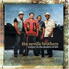 Neville Brothers Walkin In The Shadows of Love